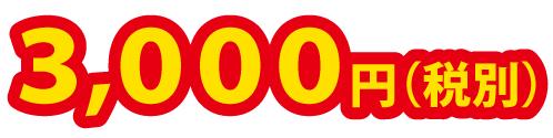 NOBEL小学生算数冬期講習 3,000円(税別)